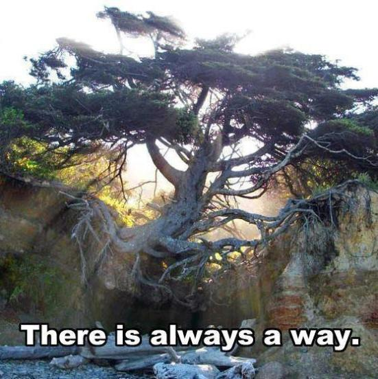 There is always a way.....