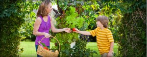 mom-son-picking-fruit_1