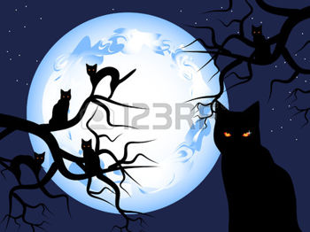 7915110-halloween-mystical-night-the-mysterious-moon-in-the-sky-black-cats-sit-on-trees